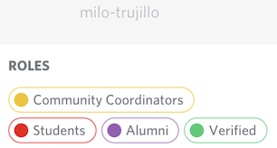 Screenshot of Discord Roles